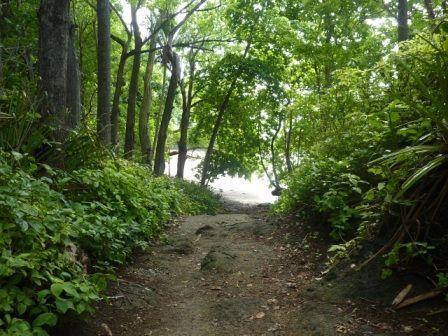 Montezuma-randonnee-cascade.jpg