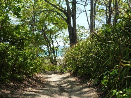 Montezuma_chemin.jpg