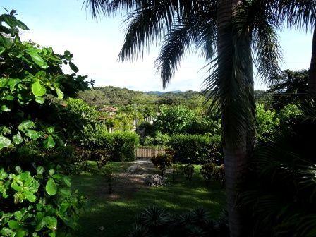 maison-vegetation-nov-2013.jpg