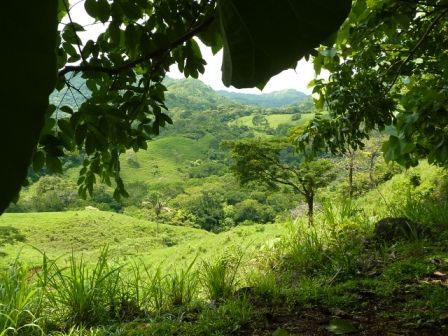 nicoya-paysage.jpg