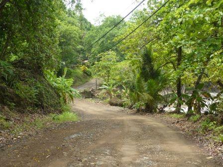 piste-montezuma-cabuya.jpg