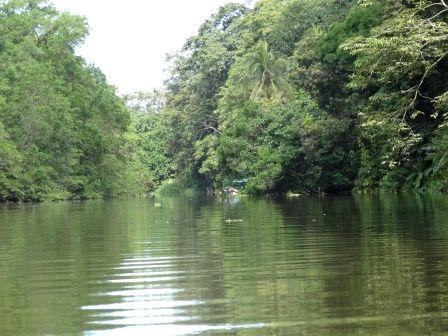 tortuguero-canal.jpg